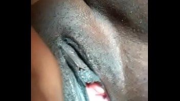 safadona negra